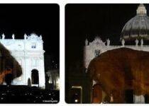 Vatican City Wildlife